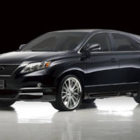 2010 Lexus RX350 Black Bison Edition