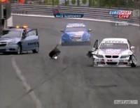 Video : Franz Engstler Crashes into Un-Safety Car in WTCC