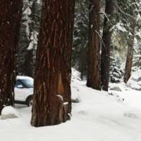 2011 Ford Explorer teased