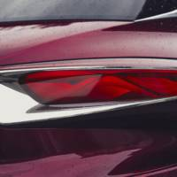 Citroen DS Wild Rubis - official photos and details