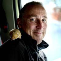 VIDEO: Charlie, the hamster, steers a Volvo FMX truck