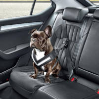 Skoda launches accesories to transport dogs in the car