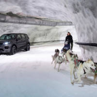 Land Rover Discovery Sport races a dog sled
