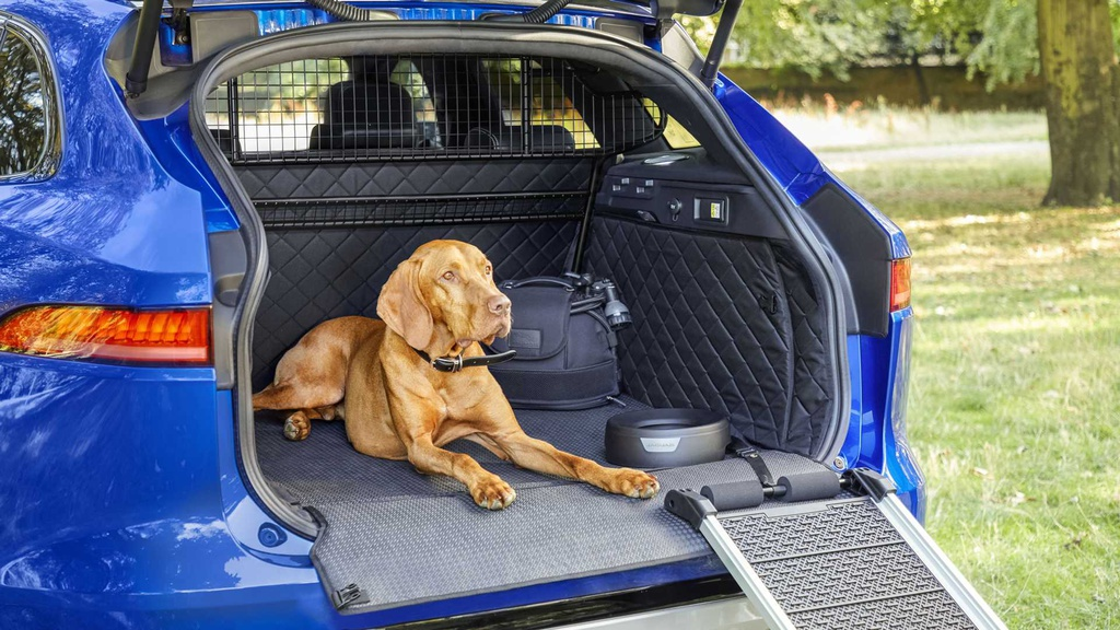 Jaguar has some pet-friendly accessories for your beloved companion